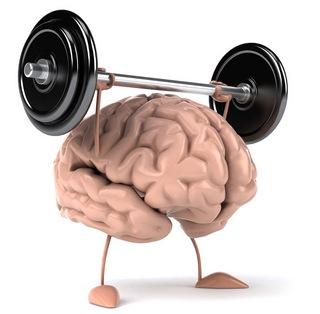 тренируем мозги