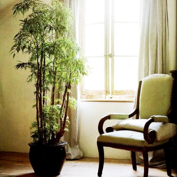 Уборка квартиры и здоровье