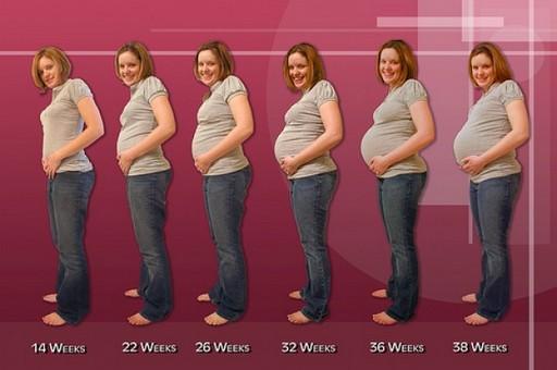 Как определить срок беременности?
