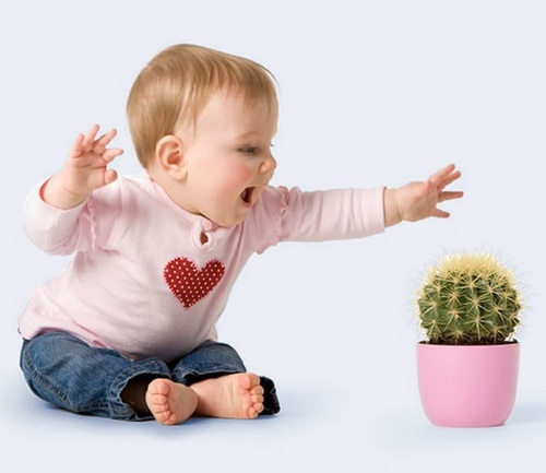 Если в доме ребенок избавьте от опасных растений.