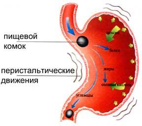 Восточная система похудения