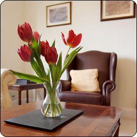 Флоротерапия в вашем доме