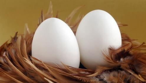 Яйца защищают от рака