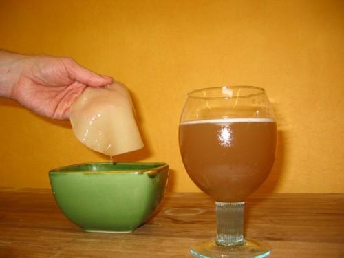 Целебные свойства чайного гриба