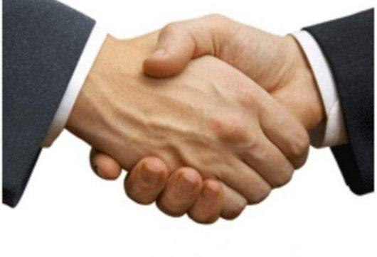 Рукопожатие - определяем темперамент