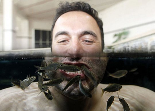 Гарра Руфа чистят зубы