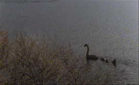 Чудовище озера Лохнесс