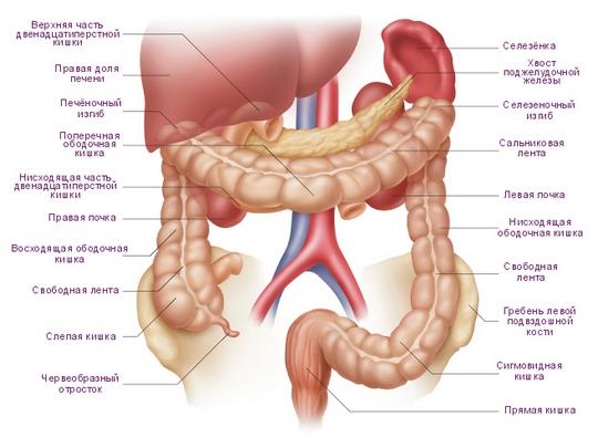 Промывание толстого кишечника