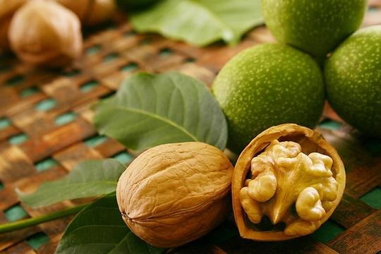 Грецкий орех для ребенка и мамы