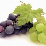 Виноград и мода