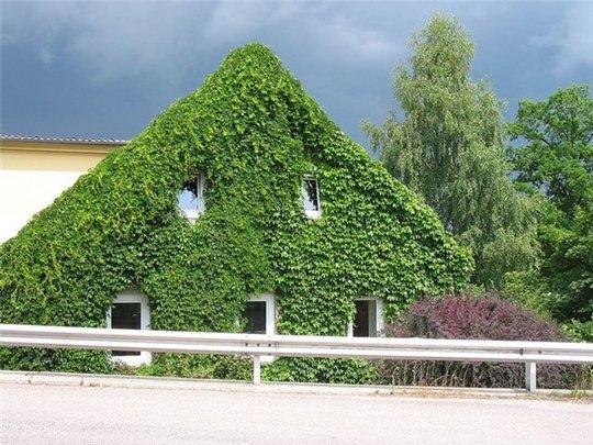 Экотехнологии при строительстве жилья