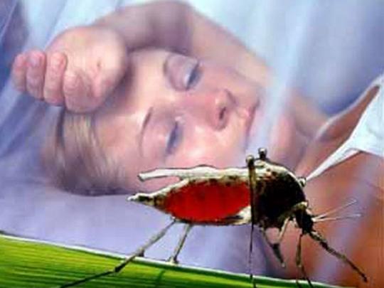 Комары и малярия