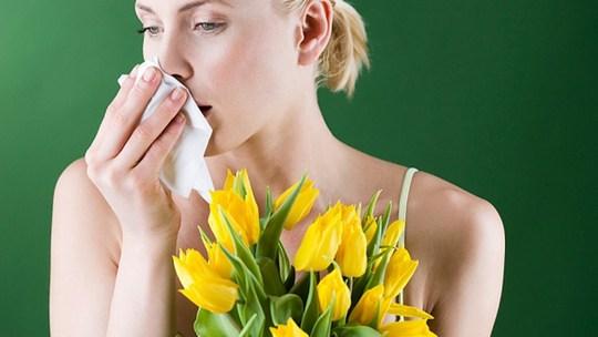 Сезонные поллинозы – полезные советы